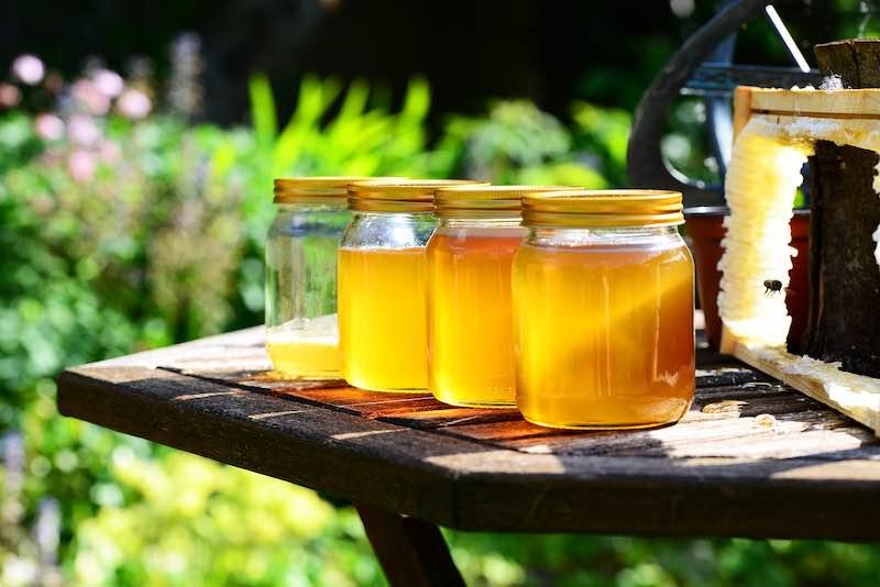 benefici acqua miele
