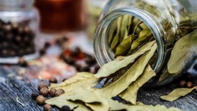 Photo of Le foglie di alloro possono essere utili per far avverare i vostri desideri