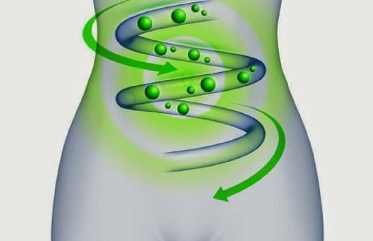 Enzima che rallenta il metabolismo