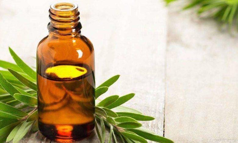 proprietà olio tea tree