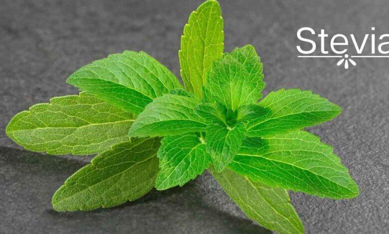 Stevia: il dolcificante naturale