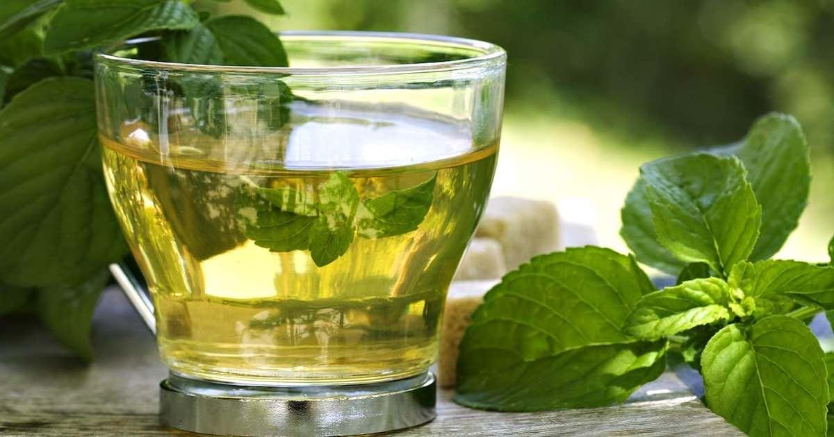 tè verde zenzero e cannella