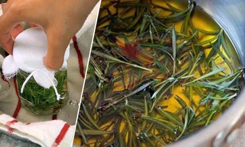 Come preparare l'oleolito al rosmarino