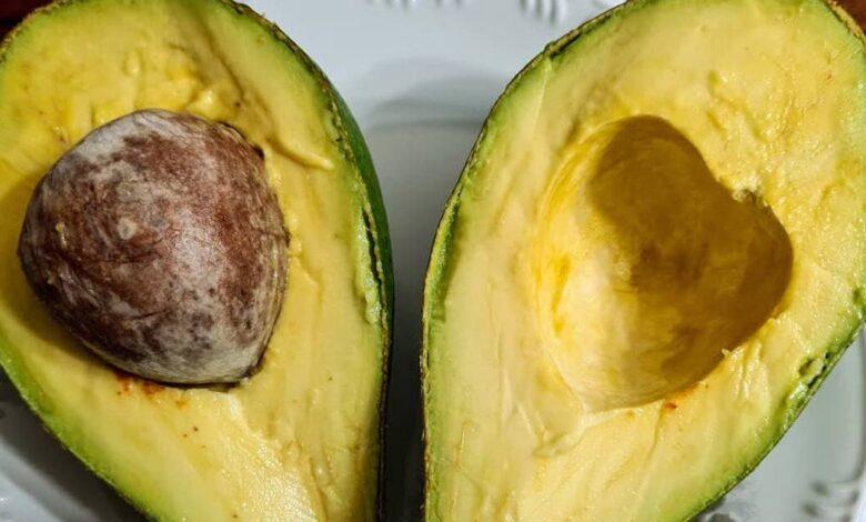 Avocado i buoni motivi per mangiare questo frutto