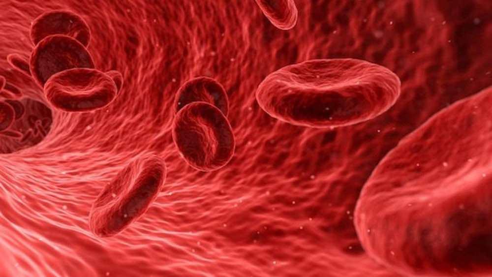 Trombosi sintomi rivelatori cause