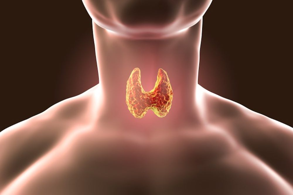salute generale e quella della tiroide